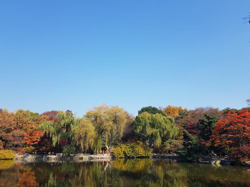 Seoul's beautiful nature is free and fun