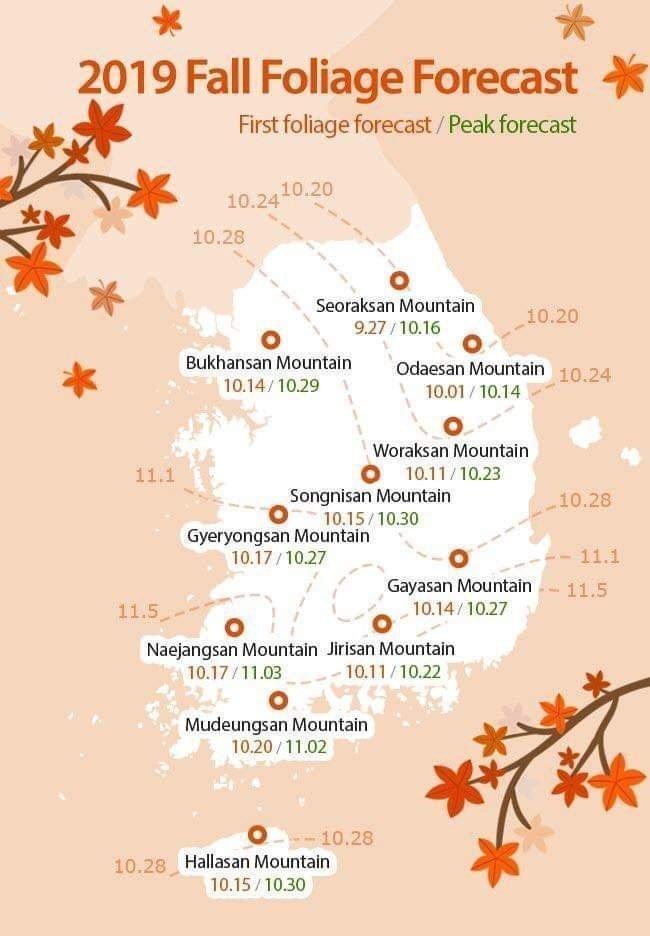 Autumn Leave Forecast For South Korea 2019