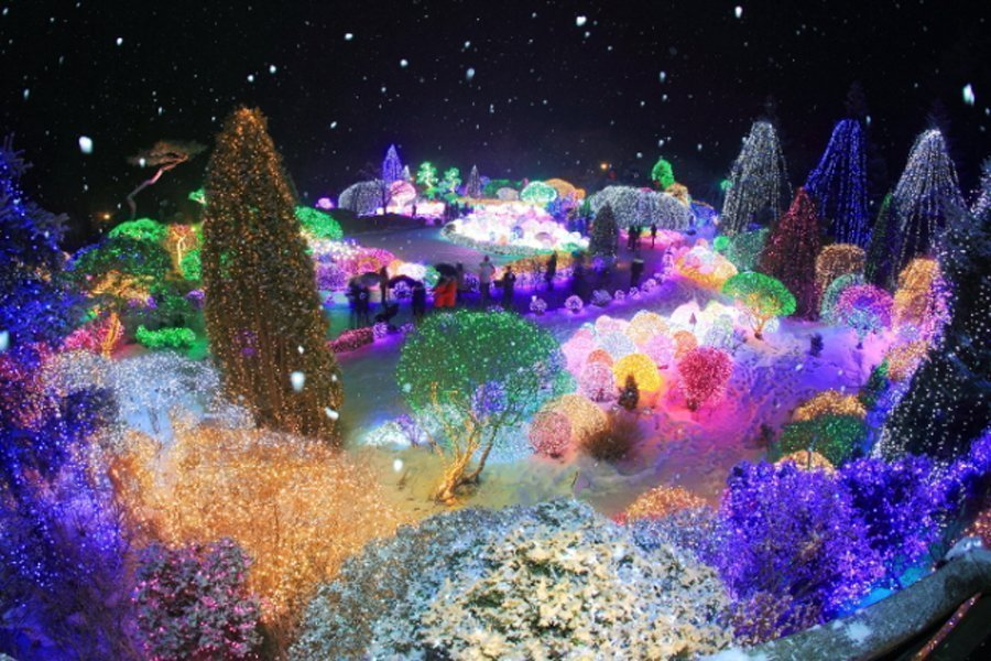 Garden of Morning Calm Light Festival in Korea