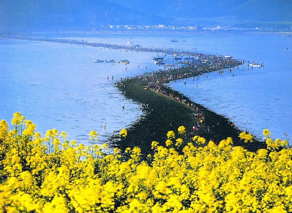 Jindo Sea Parting Miracle - one of the best spring Festivals In Korea