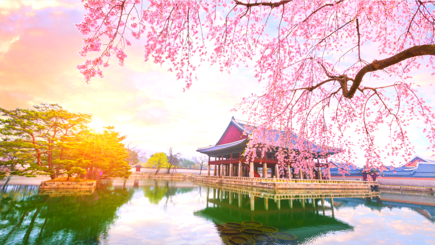 So many beautiful places to see in Korea