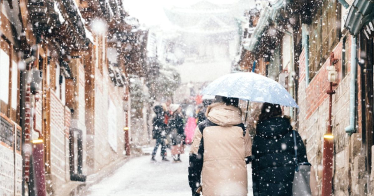 Where To See Snow In Seoul And Korea