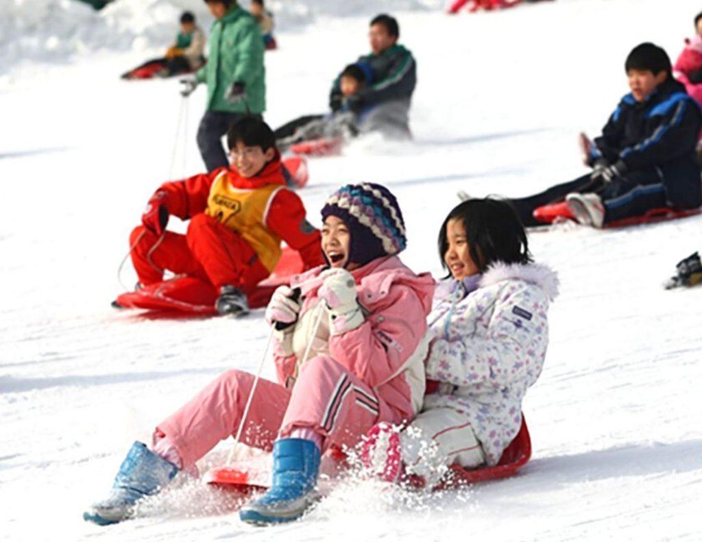 Have fun sledding while you see snow in Seoul, Korea