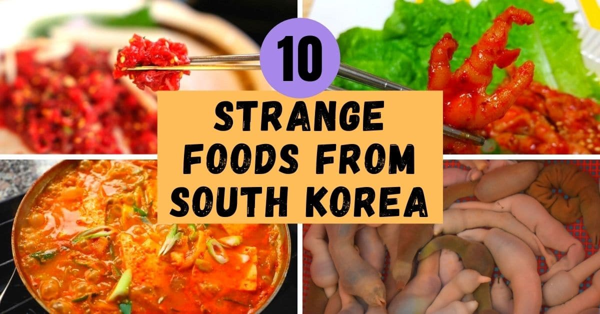 Strange Korean Foods: Would You Dare Try Them?