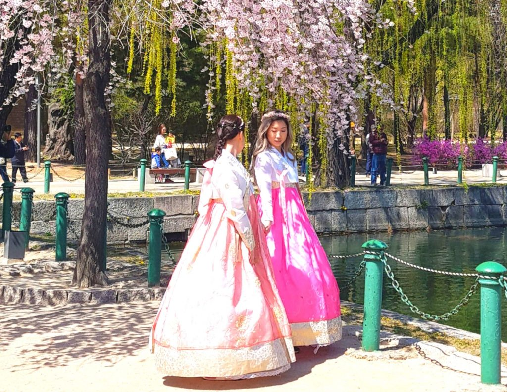 Women wearing hanbok under cherry blossoms in Seoul