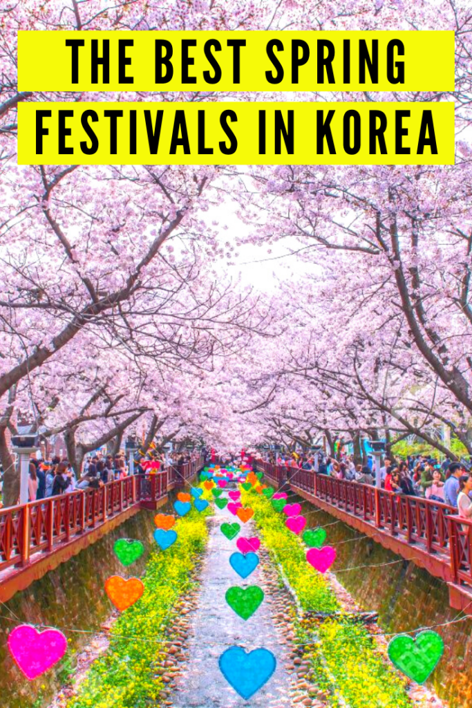 Spring Festivals In Korea Pinterest Pin 1