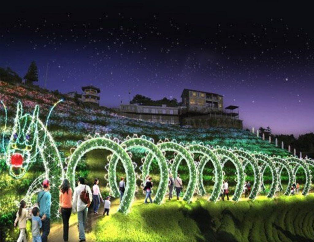 Boseong Green Tea Plantation Winter Light Festival