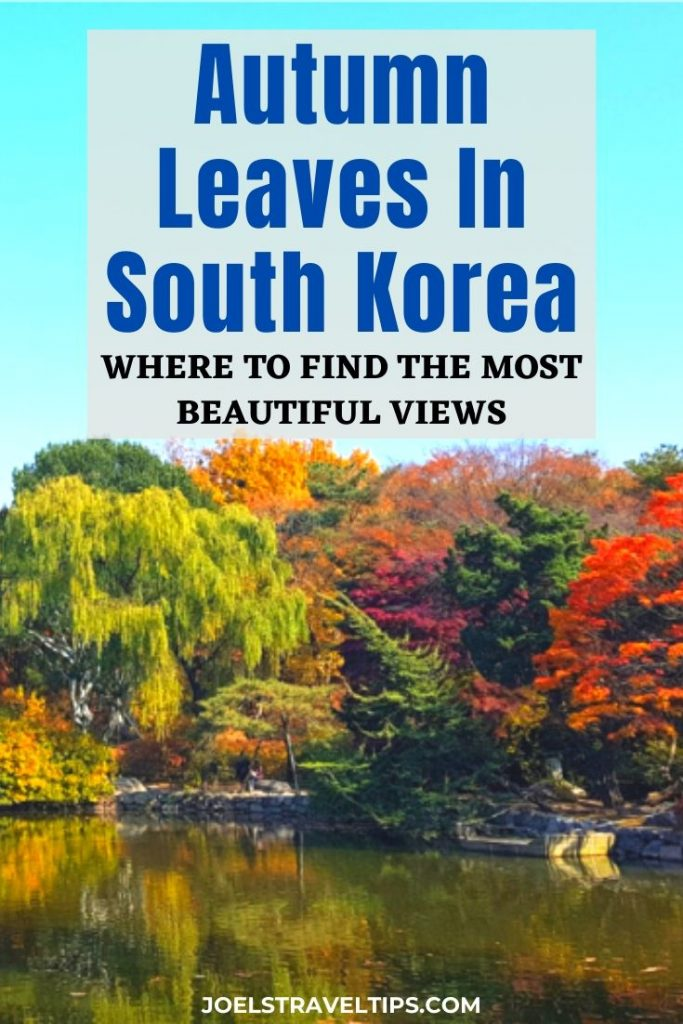 Autumn Leaves In South Korea: Where to find the most beautiful views
