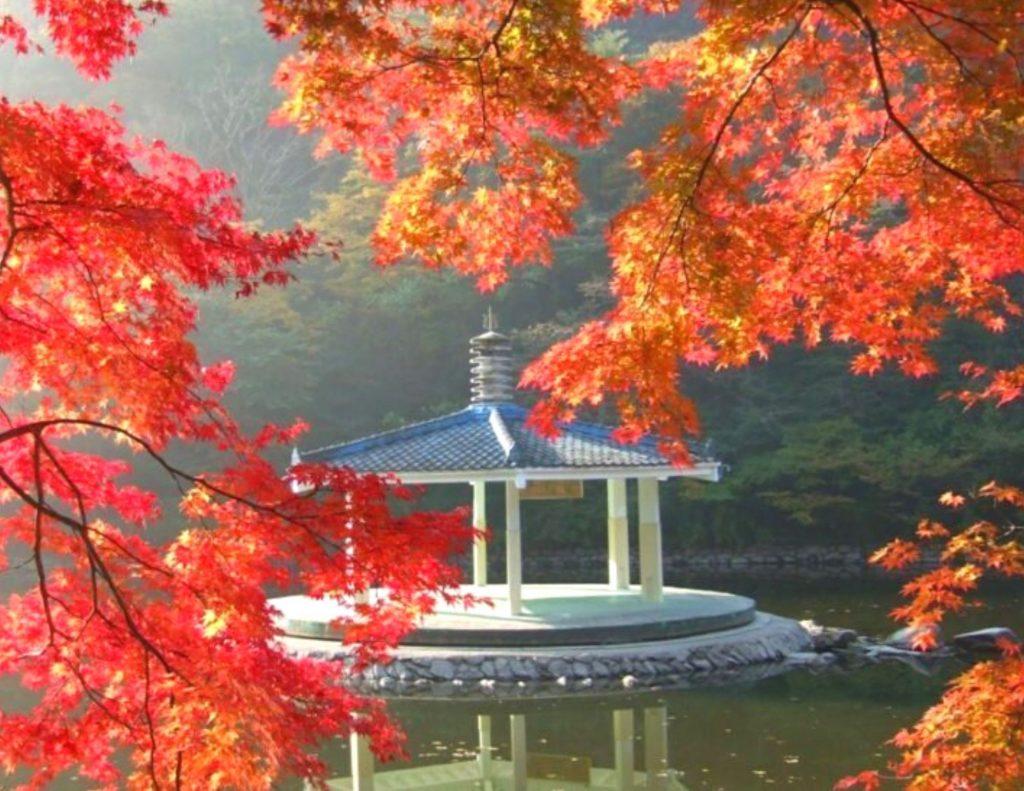 See the sights at Naejangsan National Park in Korea