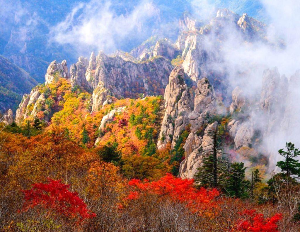 Autumn leaves on Seoraksan Mountain, Korea
