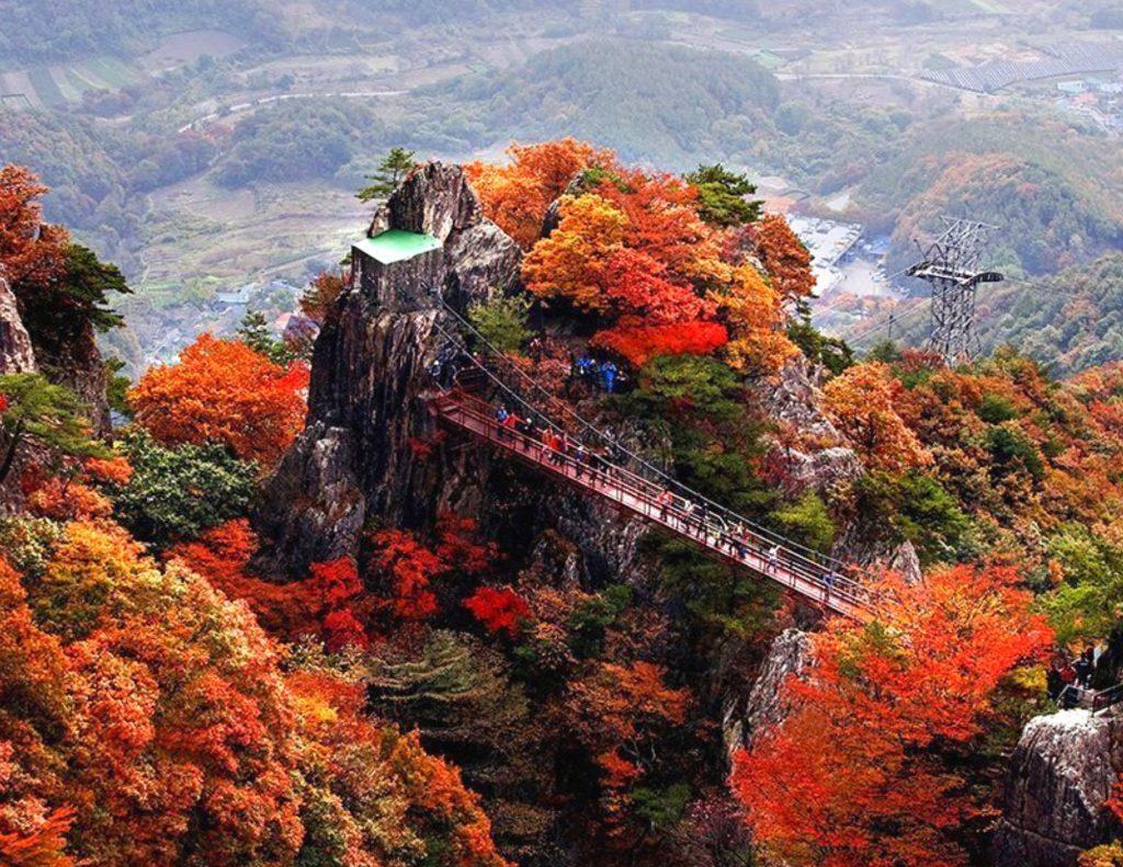 Fall leaves at Daedunsan Provincial Park in Korea