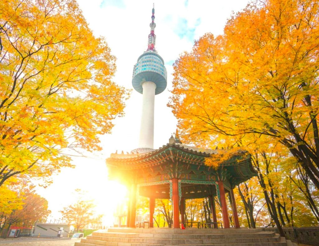Namsan Mountain and N Seoul Tower with autumn leaves in Korea