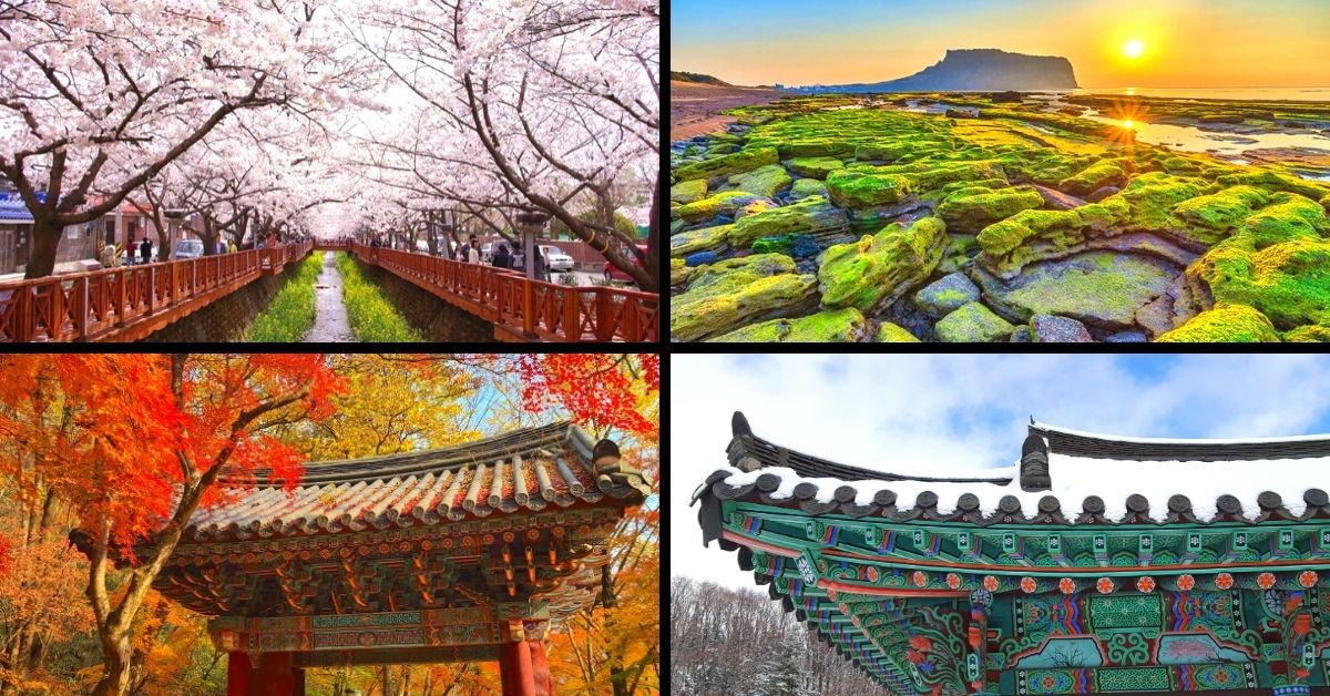 The Best Time To Visit Korea