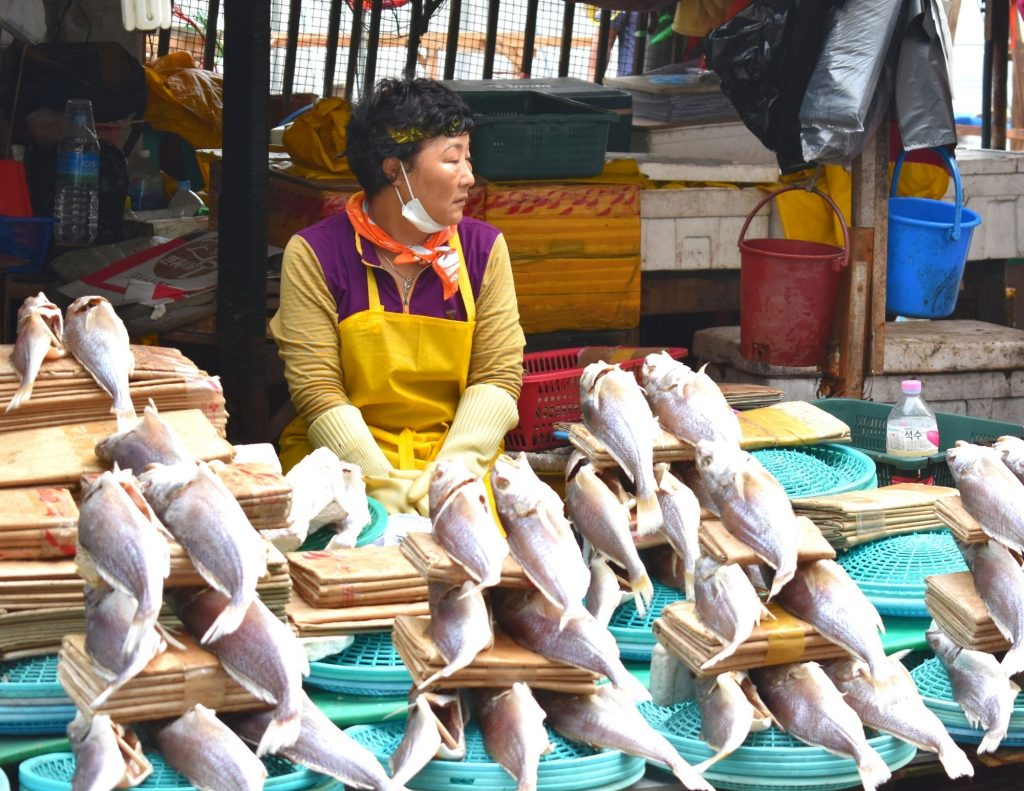 Jagalchi Fish Market in Busan, one of the largest traditional markets in korea