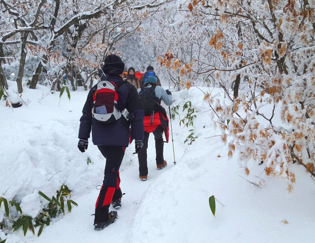 Hiking in Korea during winter with snowy scenes
