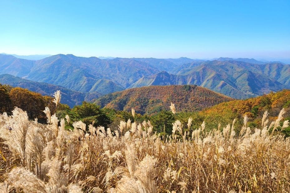 The Best Mountains To Hike In Korea At Any Time