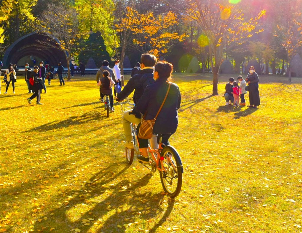 Riding a bike is not how to go to Nami Island