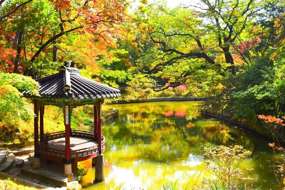Autumn Leaves in Seoul's Secret Garden with view of the pond and pagoda